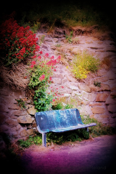 dreambench